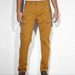 Levis Slim Pants