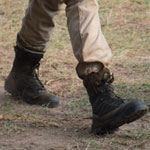 Shane Walsh Boots