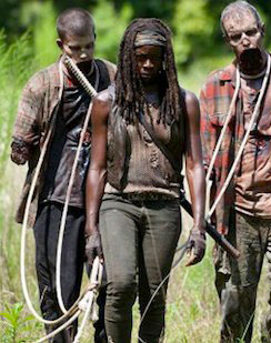 Michonne with Walkers & How to Dress Like Michonne (The Walking Dead) | TV Style Guide
