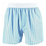 Blue and white striped boxers