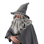 Lord of the Rings Gandalf wizard hat